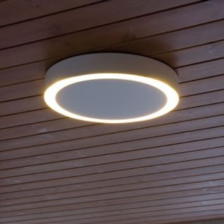 Amigo Small Indoor Outdoor Ceiling Light