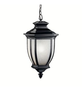 Salisbury 1 Light Outdoor Pendants/Chandeliers in Black (Painted) 9843BK