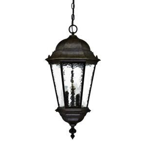 Acclaim Lighting Telfair Collection Hanging Outdoor 3 Light Black Coral Light Fixture 5526BC