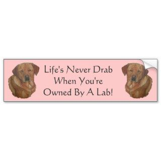 golden labrador retriever dog amusing slogan bumper stickers