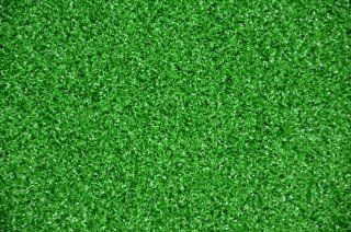 Dean Premium Heavy Duty Indoor/Outdoor Green Artificial Grass Turf Carpet Rug/Putting Green/Dog Mat, Size 6' x 8'  Area Rugs
