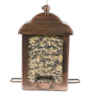 Perky Pet Lantern Bird Feeder