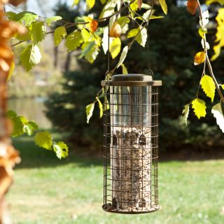 Perky Pet Squirrel Stumper Bird Feeder   Bird Feeders