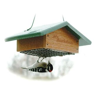 Going Green Recycled Plastic Upside Down Suet Bird Feeder   Bird Feeders