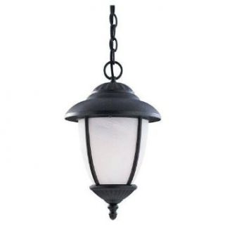 Sea Gull Lighting 60041 962 H.S.S. Co Op Outdoor Chain Hung Lantern, Brushed Nickel   Ceiling Pendant Fixtures