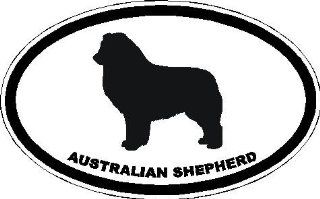 "6"" Australian Shepherd euro oval Magnet for Auto Car Refrigerator or any metal surface."