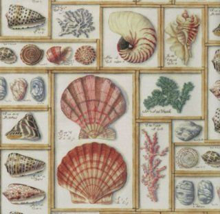 "Sea Shells Gift Wrapping Paper 24"" X 6'  Other Products"