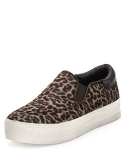 Leopard Print Calf Hair Slip On Sneaker, Black/Brown   Ash   Brown pattern (6B)