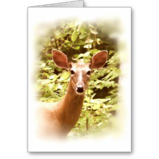 Portrait of a Deer Greeting Cards