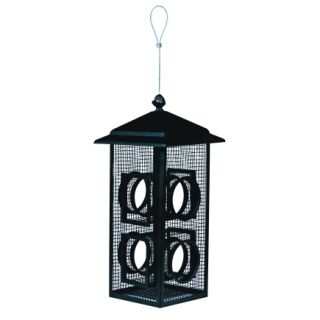 Perky Pet Fly Through Black Bird Feeder   Feeders & Houses