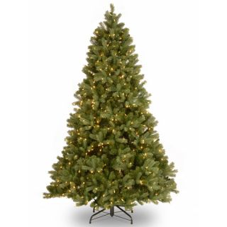 foot Downswept Douglas Fir Tree with Clear Lights