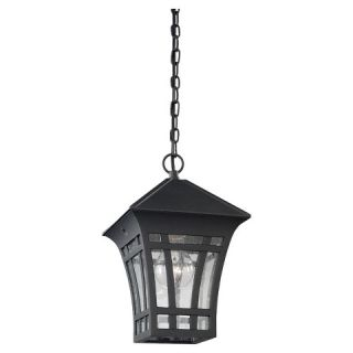 Sea Gull 1 Light Outdoor Pendant   Black