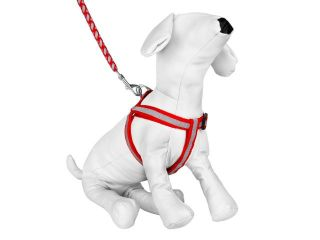 Braided Choke Free Dog Harness w/ Leash for Walking or Exercise (Red/Grey)