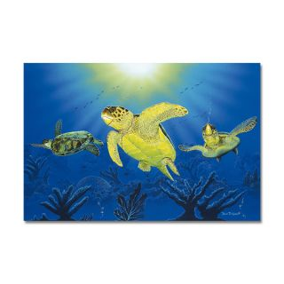 David Dunleavy Turtle Dreams Canvas Wall Art   Shopping
