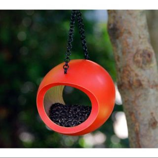 Orange Fly through Backyard Hanging Bird Feeder