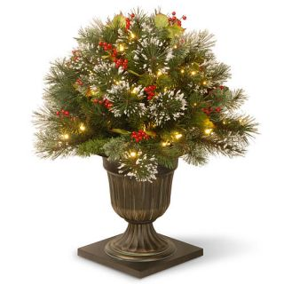 26 Inch Wintry Pine Porch Bush with Clear Lights    National Tree Company